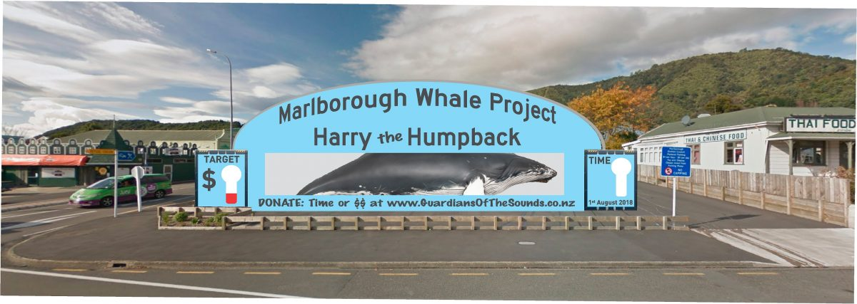 Marlborough Whale Project