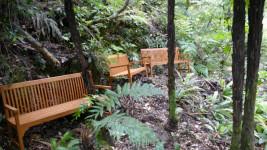 Bush Oasis