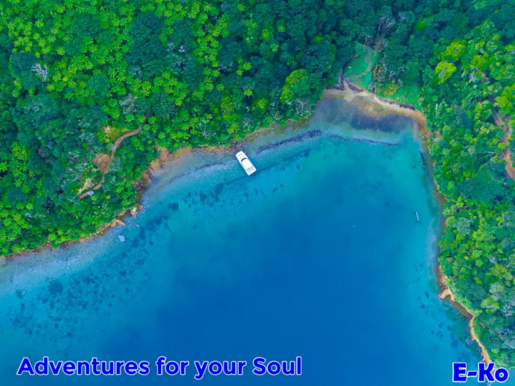School House Bay aerial