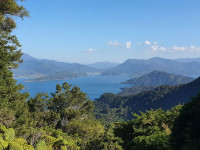 Queen Charlotte Track view