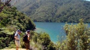 Mistletoe bay Easy Walk